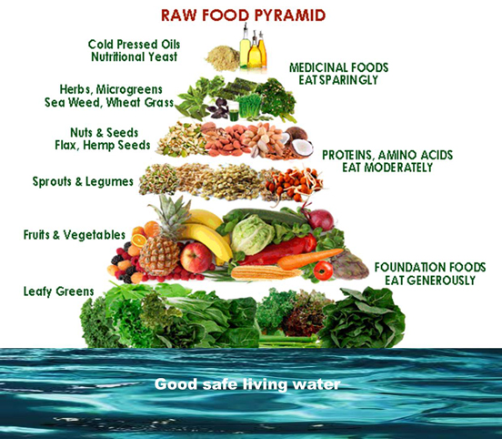 why is raw food diet different